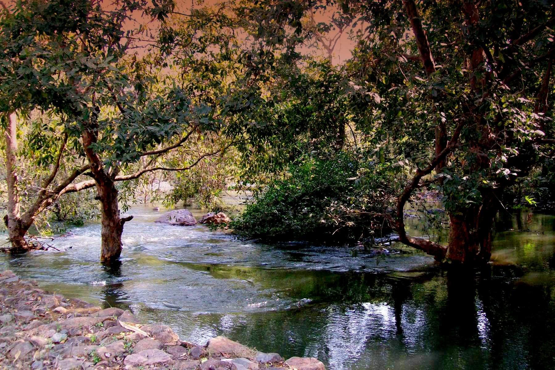 Sita Mata Sanctuary, Pratapgarh